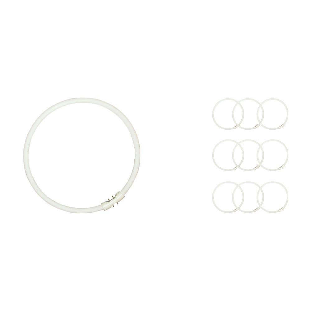 Multipack 10x Sylvania Circline Plus T5 40W 840 2GX13   Cool White