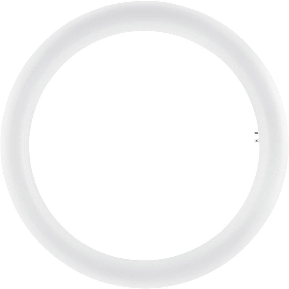 Osram SubstiTUBE T9 Circular EM MAINS G10Q 20W 840   Replaces 32W